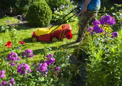 Mann mht Rasen im Garten mit Rasenmher